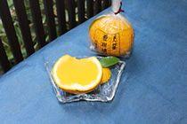 有職菓子御調進所 老松|京の老舗|京の読みもの|そうだ 京都、行こう。~京都への旅行、観光スポットで京都遊び~