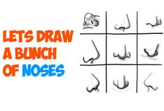 Today we will show you how to draw the human nose from all different directions, angles, and positions. The following step by step guide should help you with drawing noses that you weren't sure how to draw before.