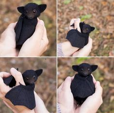 We Totally Appreciate These Photos Of Baby Bats - World's largest collection of cat memes and other animals Funny Animal Memes, Cute Funny Animals, Funny Animal Pictures, Cute Baby Animals, Cat Memes, Animals And Pets, Funny Memes, Wild Animals, Hilarious Pictures