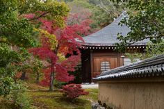 Temple du Pavillon d'or (Kinkaku-ji) (Kyoto) - TripAdvisor Kyoto, Temples, Trip Advisor, Sidewalk, Mansions, House Styles, Home Decor, Deck Gazebo