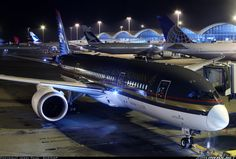 Royal Jordanian Airlines Boeing 787...one of the first operators of this innovative aircraft.