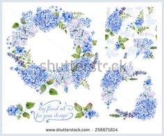 Set of different  blue, cyan  hydrangea, lavender, currant, frame, decorative corners and one seamless pattern  for design Watercolor flowers, leaves Floral set for your design - Shutterstock  - original image