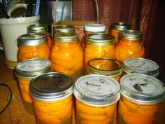 Easy Canning Apricots