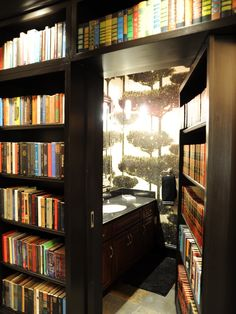 """larger opening... I've also done a simple pull out bookcase with roller legs and attached baseboard for seldom used access www.houzz.com"