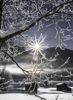 winter, snow, magic