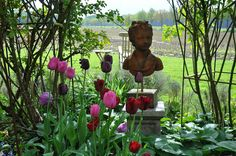 Garten Imig-Gerold - Flip - Picasa Web Albums
