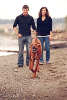 Get the couple to hold the dog, step back, then call the dog and capture what happens