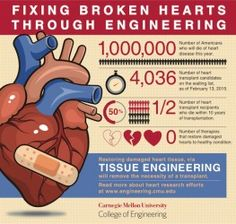 Engineering a Better Heart (INFOGRAPHIC) - 3D Bioprinting Conference