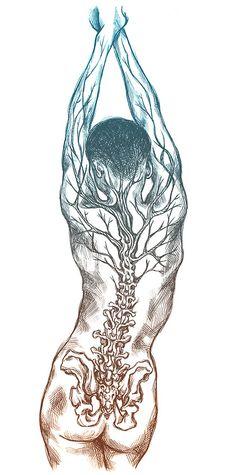 An anatomy type illustration from last night. Spine Drawing, Body Drawing, Type Illustration, Medical Illustration, Art Illustrations, Drawing Sketches, Art Drawings, Medical Art, Medical Drawings