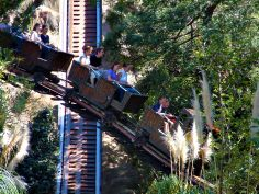 One of the rides at Gold Reef City, Johannesburg, South Africa. South Africa, I Am Awesome, Fair Grounds, African, Touch, City, Gold, Photography, Travel