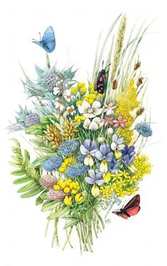 1000 images about marjolein bastin on pinterest marjolein bastin mice and dutch - Flowers that mean freedom ...