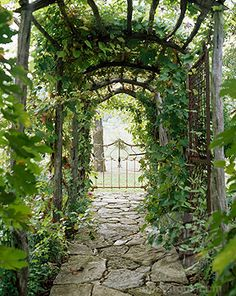 garden paths backgrounds | stock photo garden path covered with ivy credit steven randazzo ...