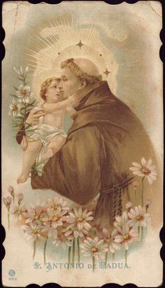 Explore ehem. Diether Petter's photos on Flickr. ehem. Diether Petter has uploaded 5296 photos to Flickr. Saint Antony, Saint Anthony Of Padua, Catholic Religion, Catholic Saints, Padua Italy, Vintage Holy Cards, Pearl Steven, Virgin Mary, Pictures