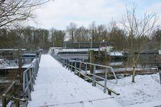 Het water op is dé manier om De Biesbosch te verkennen!