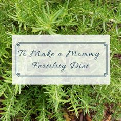 To Make a Mommy Fertility Diet Blog Post