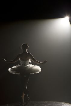 Quelle horreur! Natalie Portman didn't do all of her own dancing on Black Swan? *dramatic gasp* Oh wait, we knew that already. And even if we didn't know it, we should have guessed. After all, the ...