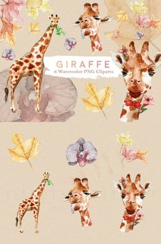 Giraffe Clipart Watercolor  Giraffe, Wildlife, Safari, Zoo, Animal, Tiger, Lion, Floral, Graphic Design, Invitation, Planner, Scrapbook, Sticker