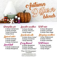 I'm always in the mood for fall! Love these combos!! www.theoildropper.com