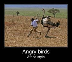 Africa style!