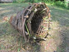 How to Make a Primitive Funnel Fish Trap that keeps on giving. –