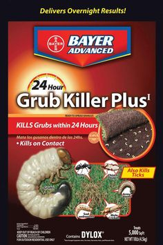 Kill the grubs and other pests from damaging your lawn by using this Bayer Advanced Grub Killer Plus Granules. Comes with excellent turf rescue formula. Grub Worms, Leafhopper, Earwigs, Pest Management, Thing 1, Garden Guide, Garden Pests, Juice