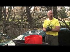 High Density Potato Planting in Growing Bags - YouTube