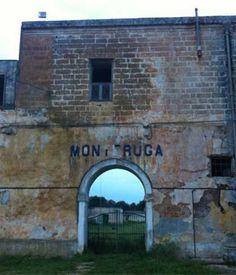 Itinerari emozionanti nel Salento nella città fantasma di Monteruga   Vizionario