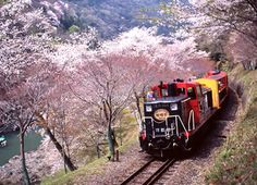 closer view to Sagano romantic train, Arashiyama, west of Kyoto