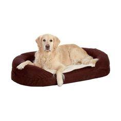 Karlie Ortho Bed - Oval, Braun 100 x 65 cm Memory Foam, Tropical Fish, Dog Supplies, Flamingo, Bean Bag Chair, Labrador Retriever, Pets, Animals, High