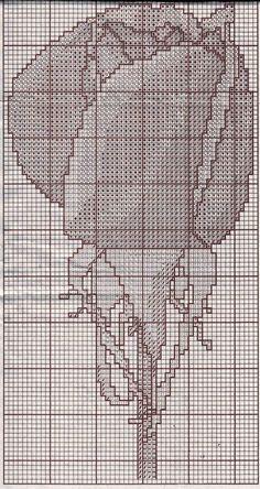 [3.jpg]