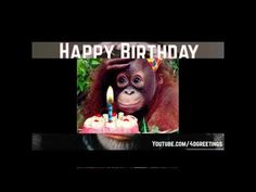 Happy Birthday Wishes funny for whatsapp and Instagram | #Birthday Wishes - YouTube Happy Birthday Status, Birthday Wishes Funny, Youtube, Instagram, Youtubers, Youtube Movies