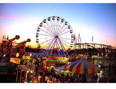 Don't miss the 2016 Erie County Fair this August because this year will be…