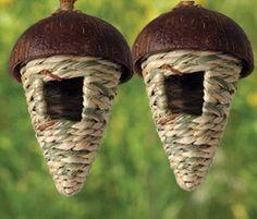 coconut shell bird house