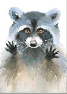 Fuchs Illustration, Watercolor Illustration, Watercolor Paintings, Original Paintings, Watercolours, Raccoon Drawing, Raccoon Art, Racoon, Animal Paintings