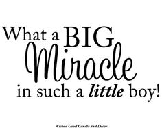 Vinyl Wall Decal  What a big miracle in such a by WickedGoodDecor, $7.99