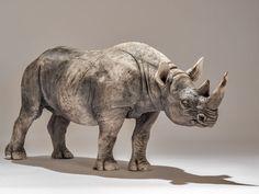 Rhino Sculpture - Nick Mackman Animal Sculpture