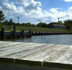We offer cruises to Smith Island from both Crisfield & Point Lookout, MD. Our Smith Island Ferry departs from both Crisfield & Point Lookout, MD daily. Smith Island, Island Cruises, Chesapeake Bay, Day Trips, Maryland, Trip Advisor, Food Photography, Scenery, Somerset