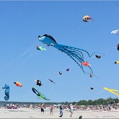 Kite Fest at Wasaga Beach last summer