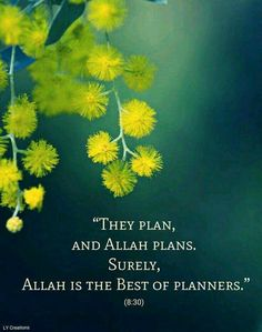 They plan and Allah plans