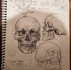 Excellent Pictures skull drawing tutorial Thoughts Desire to learn how to draw? You're in the proper place. Whether you're a starter trying to find Gcse Art Sketchbook, Sketchbook Layout, Sketching, Sketchbooks, Sketchbook Ideas, Skull Sketch, Sketchbook Inspiration, Journal Inspiration, Art Studies