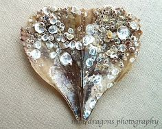 Coastal Decor Heart Art Seashell Photo Shell Wall by ninedragons, $34.00