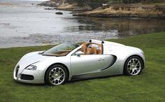 2 million dollars for this work of art.  Bugatti Veyron 16.4 Grand Sport.