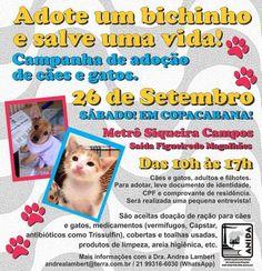 BONDE DA BARDOT: RJ: Campanha de adoção de cães e gatos em Copacabana, neste sábado (26/09)