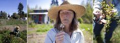 Here's Jayne on Sister Sage Herbs Farm on Vashon, Island Washington. Visit us at Pike Place Market!