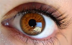 People have brown eyes because of large amount of melanin pigments in their eyes. Description from listcrown.com. I searched for this on bing.com/images