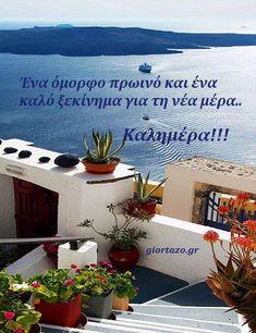 100+- Καλημέρες σε όμορφες εικόνες με λόγια....giortazo.gr - Giortazo.gr Good Night, Good Morning, Beautiful Pink Roses, Morning Greetings Quotes, Spirituality, In This Moment, Plants, Photography, Nighty Night