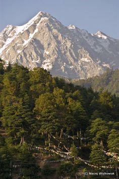 Dating-Orte in Shimla