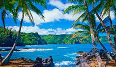 Maui: 4-Star Oceanfront Resort Sale
