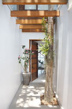 Layouts Casa, House Layouts, Lanai Design, Interior Architecture, Interior And Exterior, Compound Wall Design, Outdoor Living Rooms, House Front Design, Tropical Houses