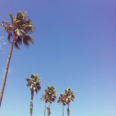 Venice beach. #beachplease #sunkissed